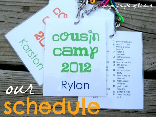 cousin camp schedule - idea for family reunion?