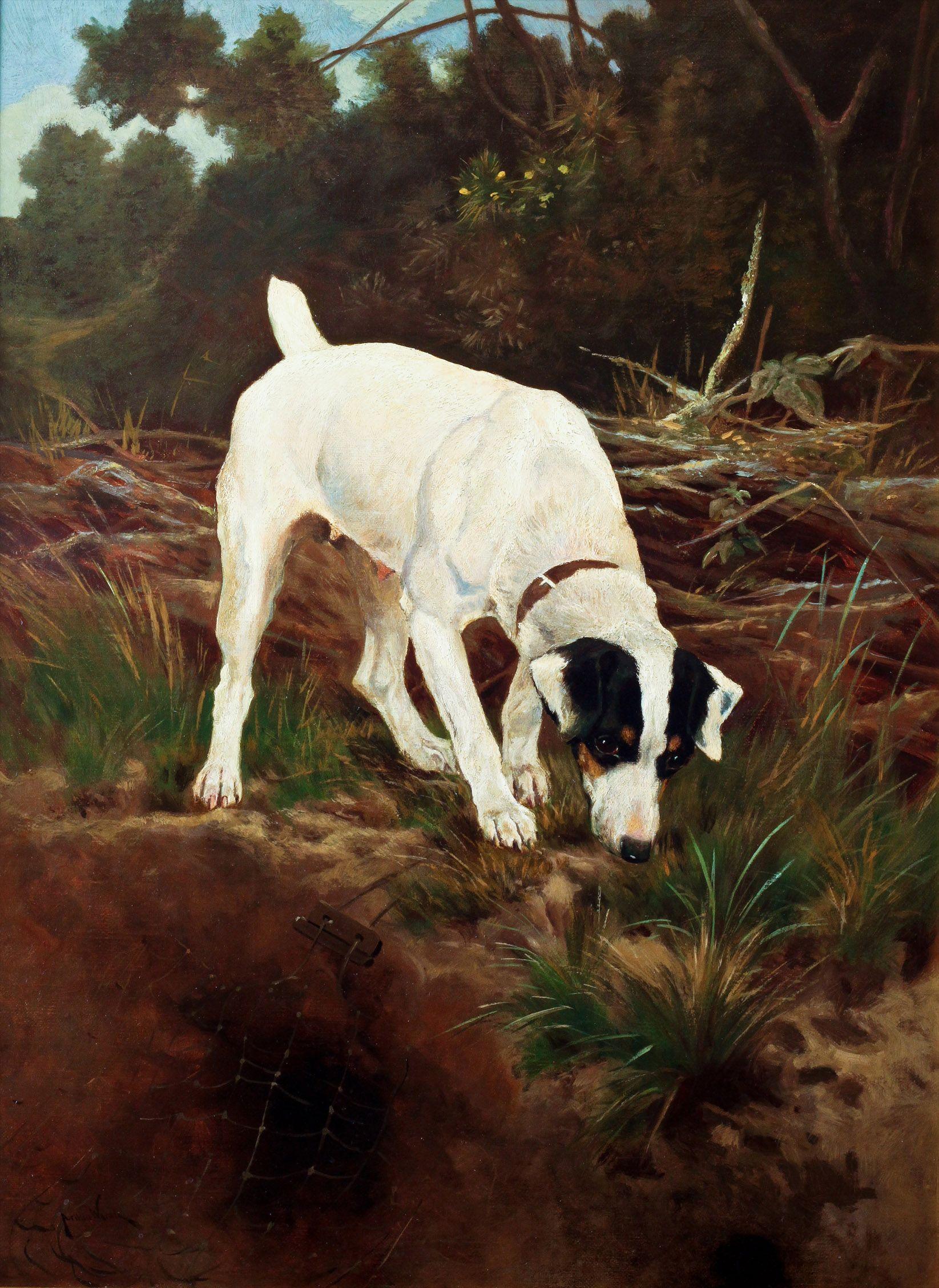 Arthur Wardle 1864 1949 Smooth Haired Fox Terrier Oil On