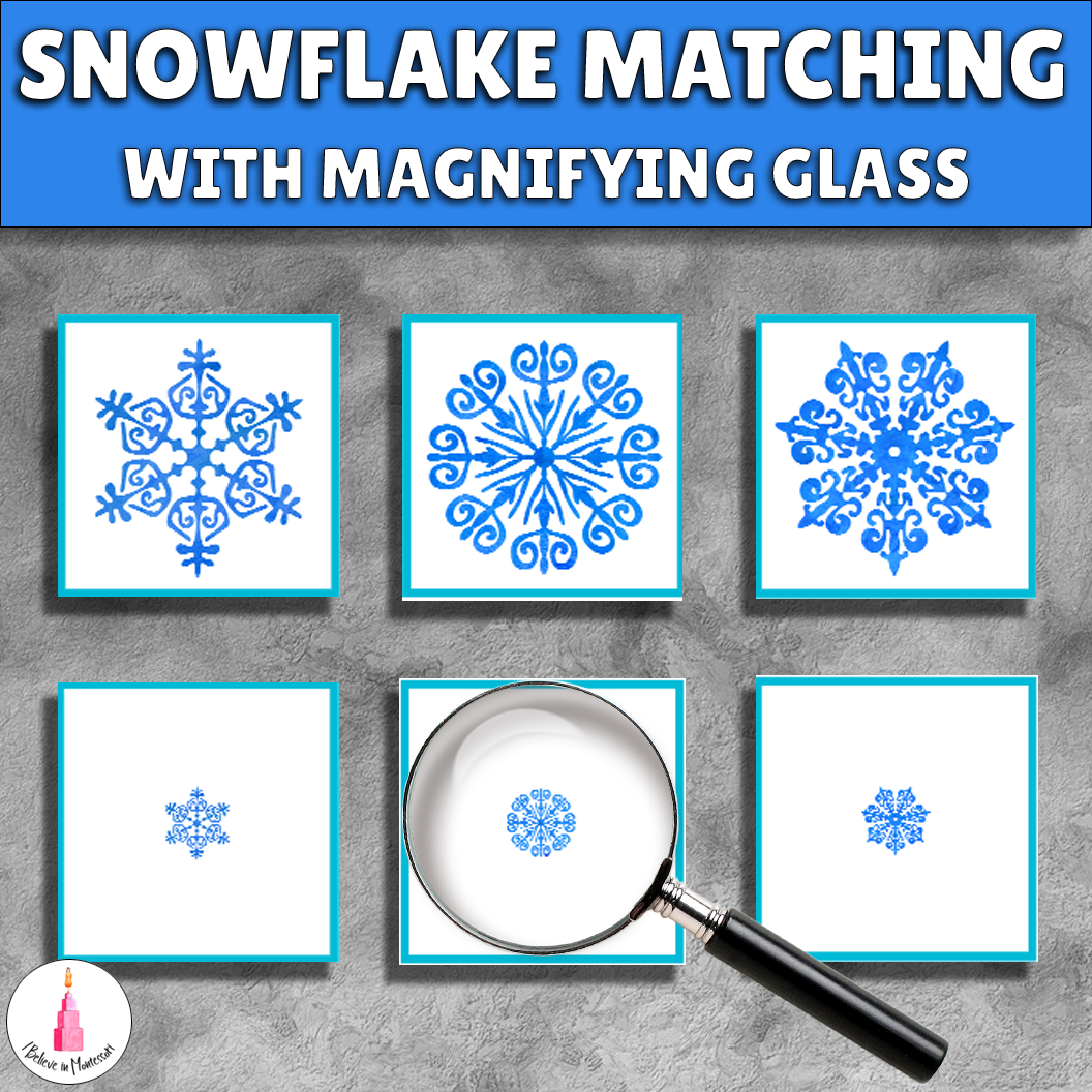 Snowflake Winter Montessori Matching Activity