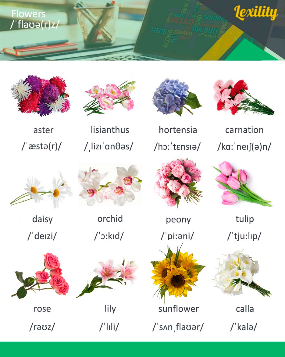 Flowers In English Chinese Language Learning Foreign Language Learning Mandarin Chinese Learning