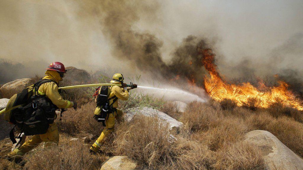 Rim Fire Wildland Firefighter California Wildfires Wildland Fire