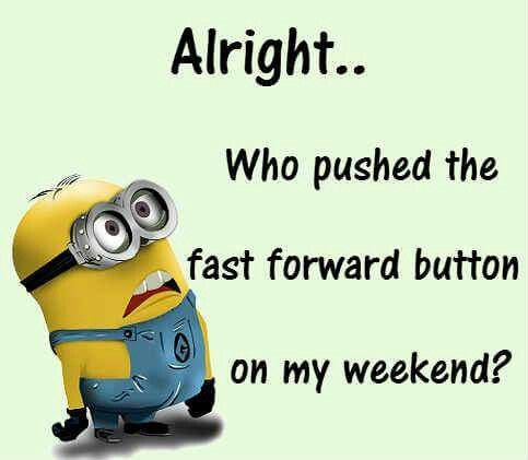 Where Did The Weekend Go Minions Funny Minion Quotes Job Humor Minions