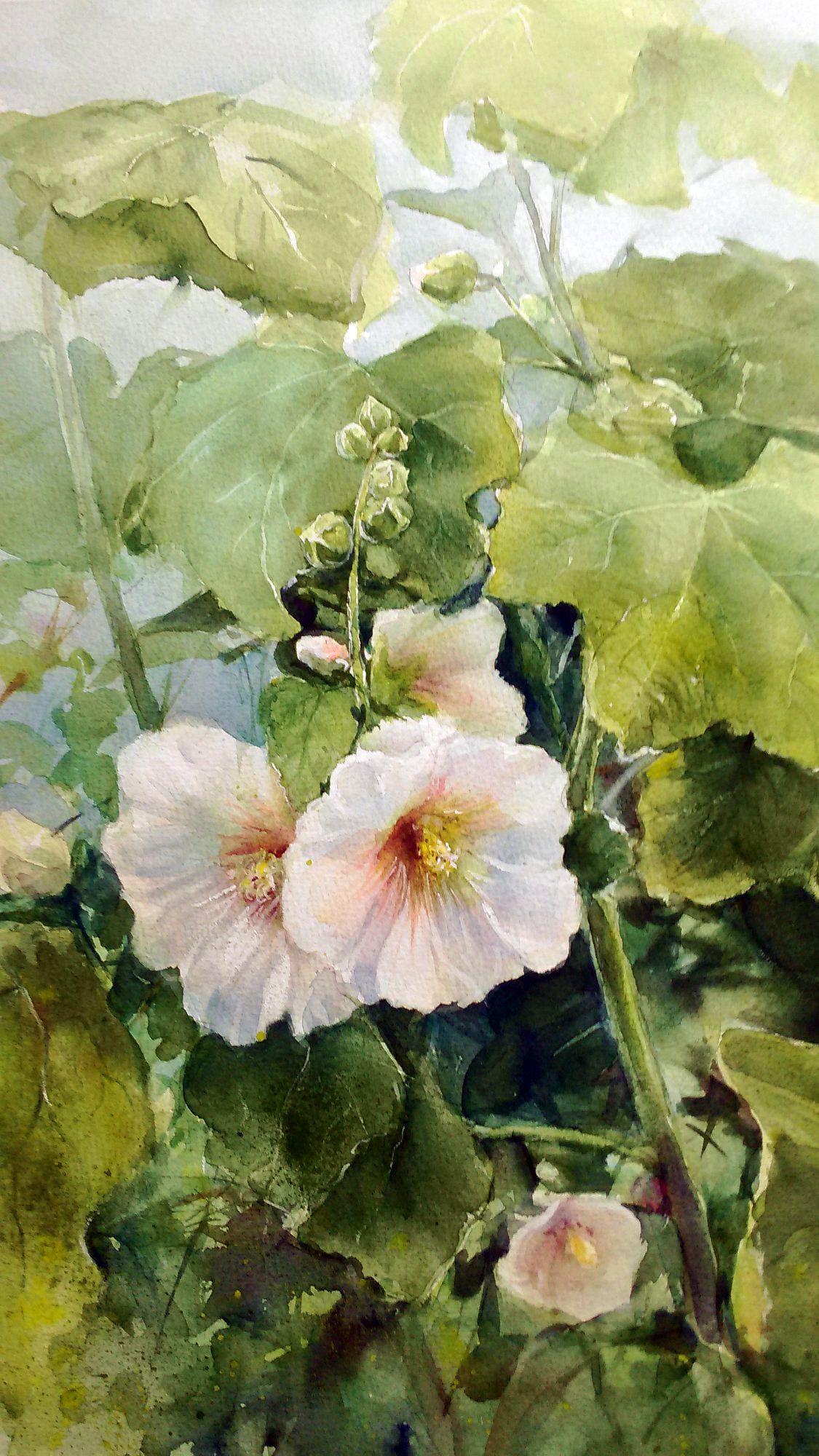 Barbara Litwiniec Mallow 2 Watercolor Watercolor Flowers