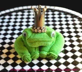 Baby Washcloth Frog | YouCanMakeThis.com