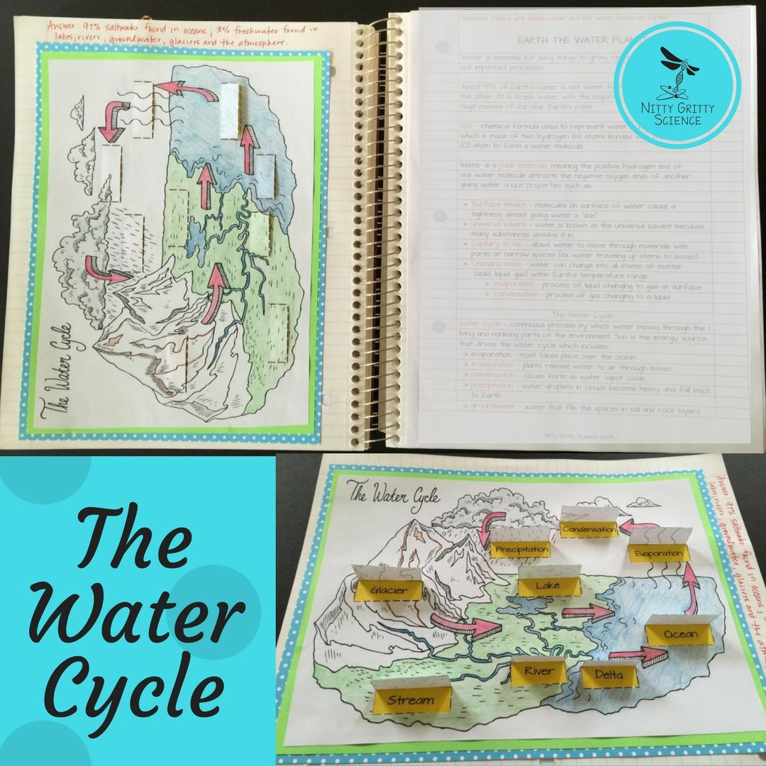 Earth S Waters Science Worksheets Interactive Science Notebook Science