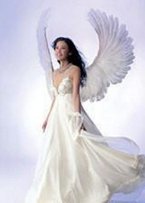 5b1ac84f4bd2 Gallery For   Realistic Angel Wings Costume