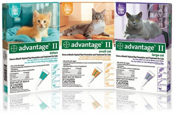 Advantage Ii For Cats Uses The Compound Pyriproxyfen To Kill Fleas