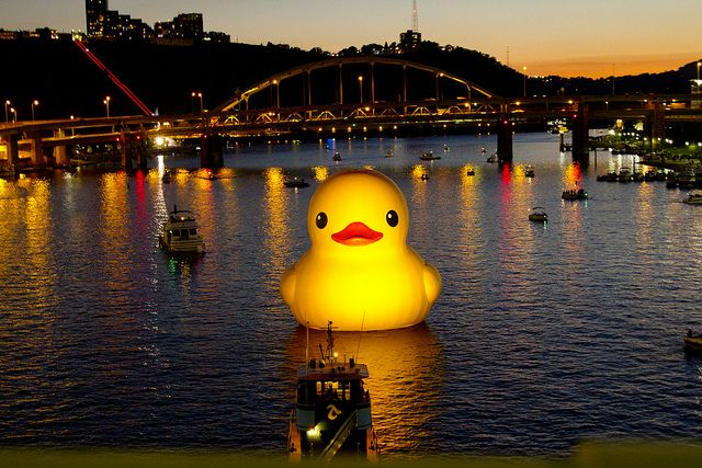 Giant Rubber Duck In Pittsburgh Rubber Duck Unbelievable Pictures Funny Duck