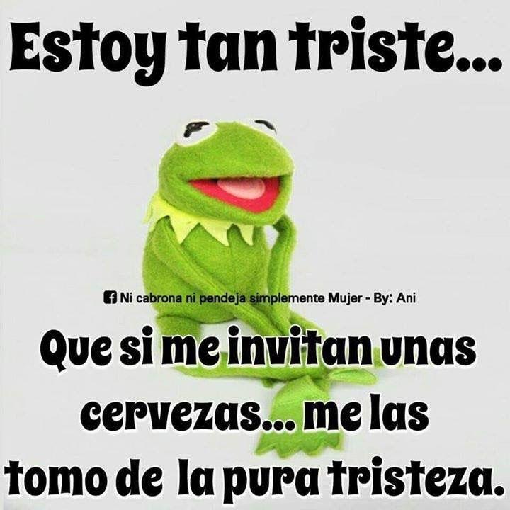 b23ad7cb5033655ab03648b86179af3f pin by reyna larios on la rana rene memes pinterest humour