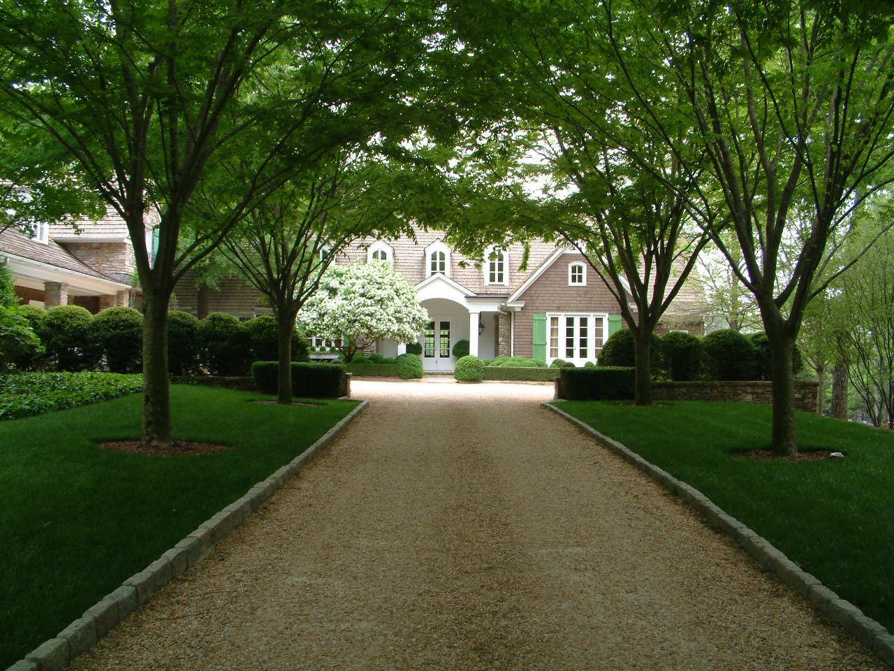 Gravel Drive And Zelcova Allee To Residence Landscape