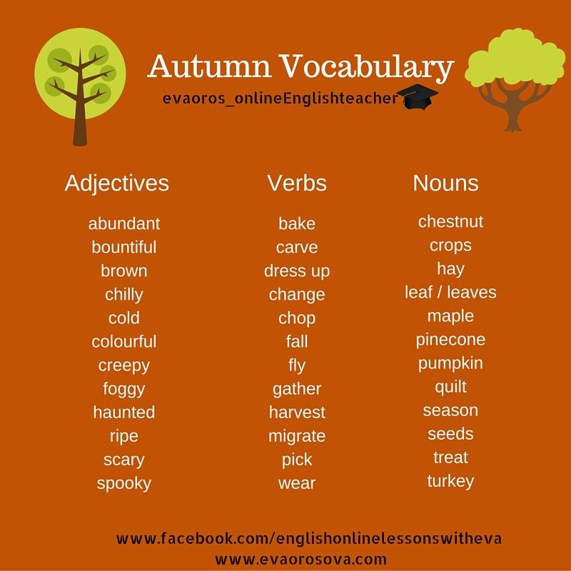 EFL Vocabulary - Seasons -Autumn