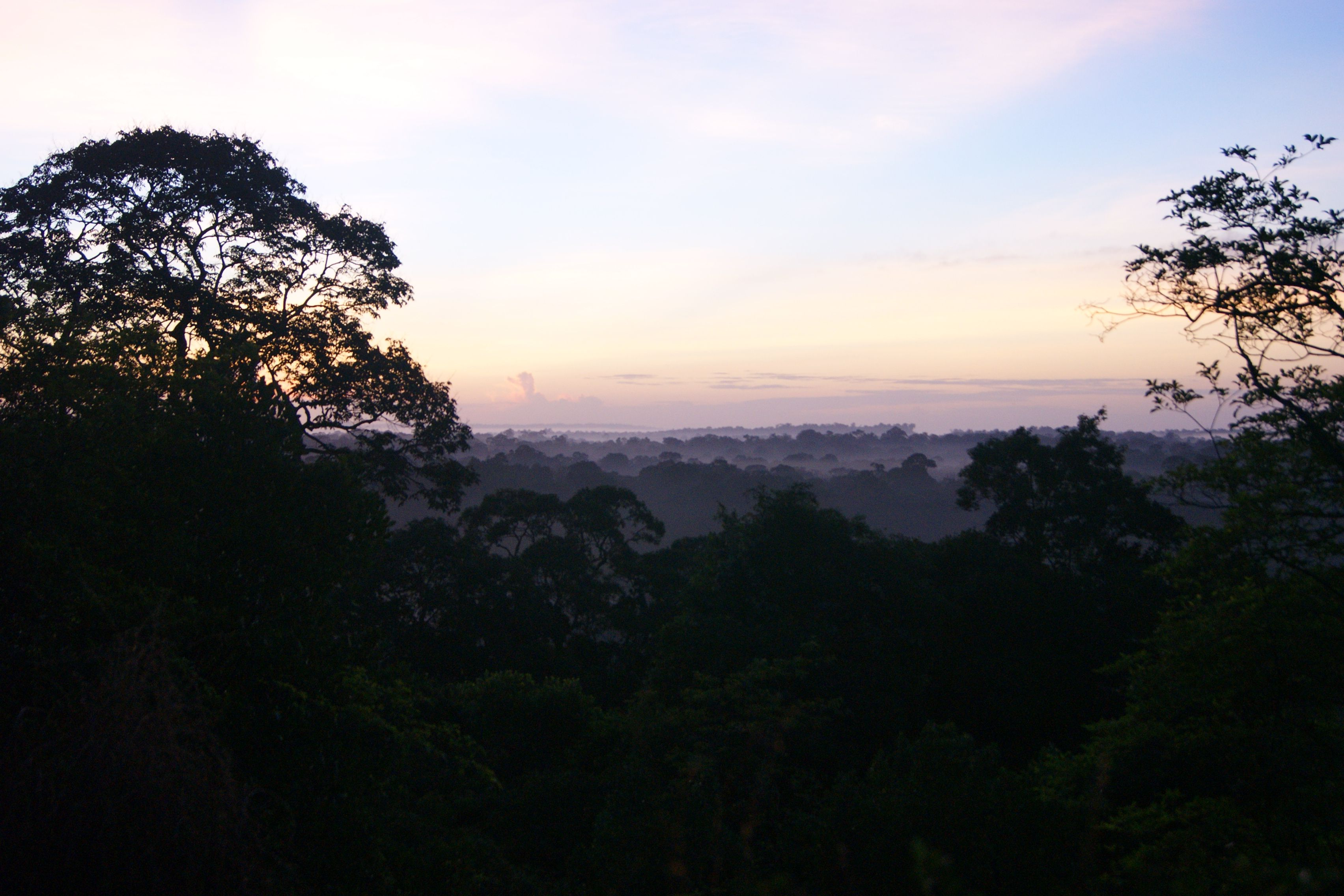 savane roche #guyane une nuit sur la fôret amazonienne http://www.the-bob-trotter.com/2013/12/excursion-savane-roche-guyane.html