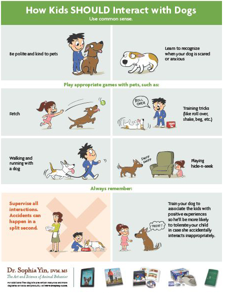 Pet Child Safety Tips Dogs And Kids Animals For Kids Dog Biting