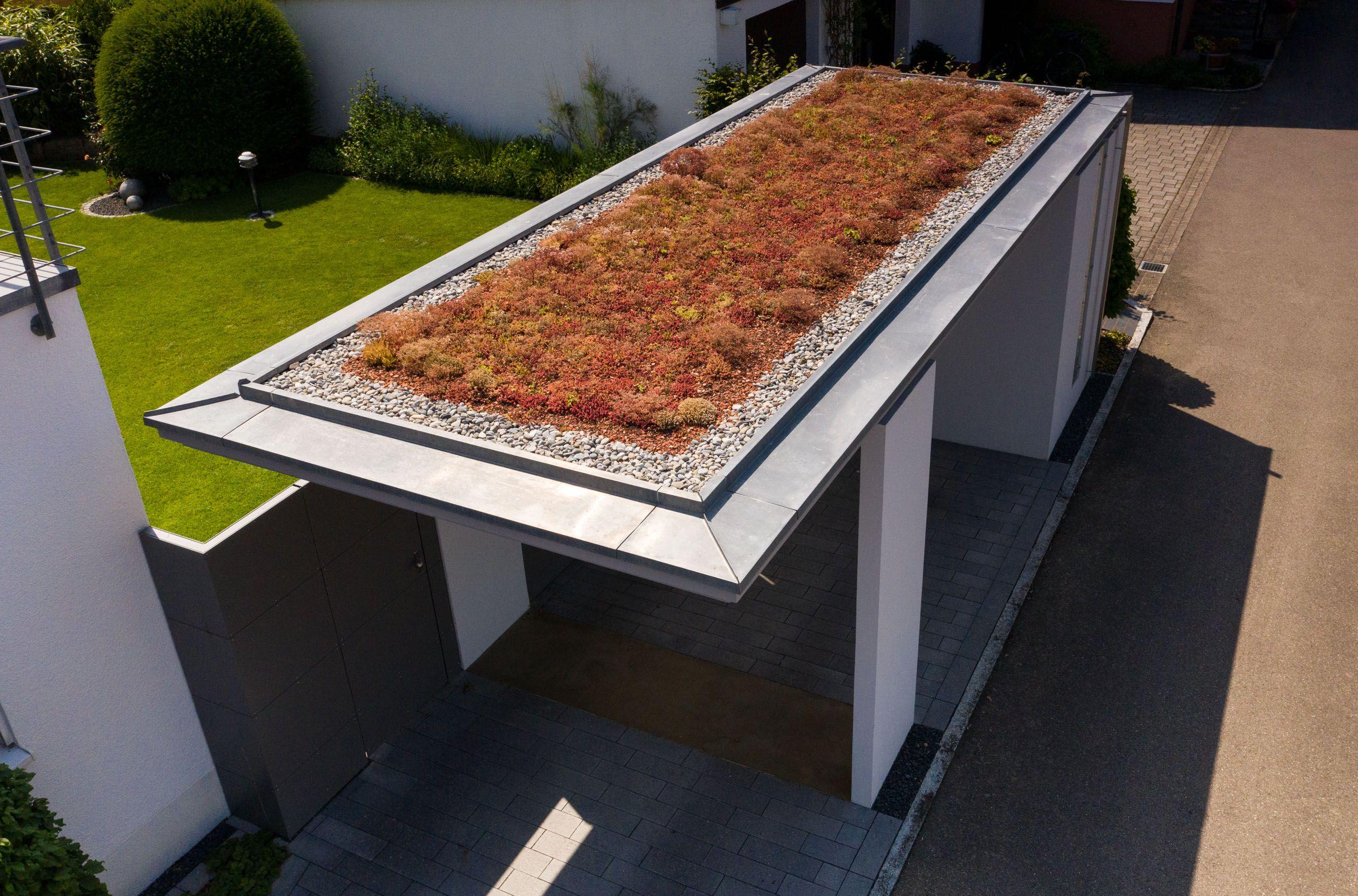Kport Mit Begrunung Dachbegrunung Extensive Dachbegrunung Augenweide