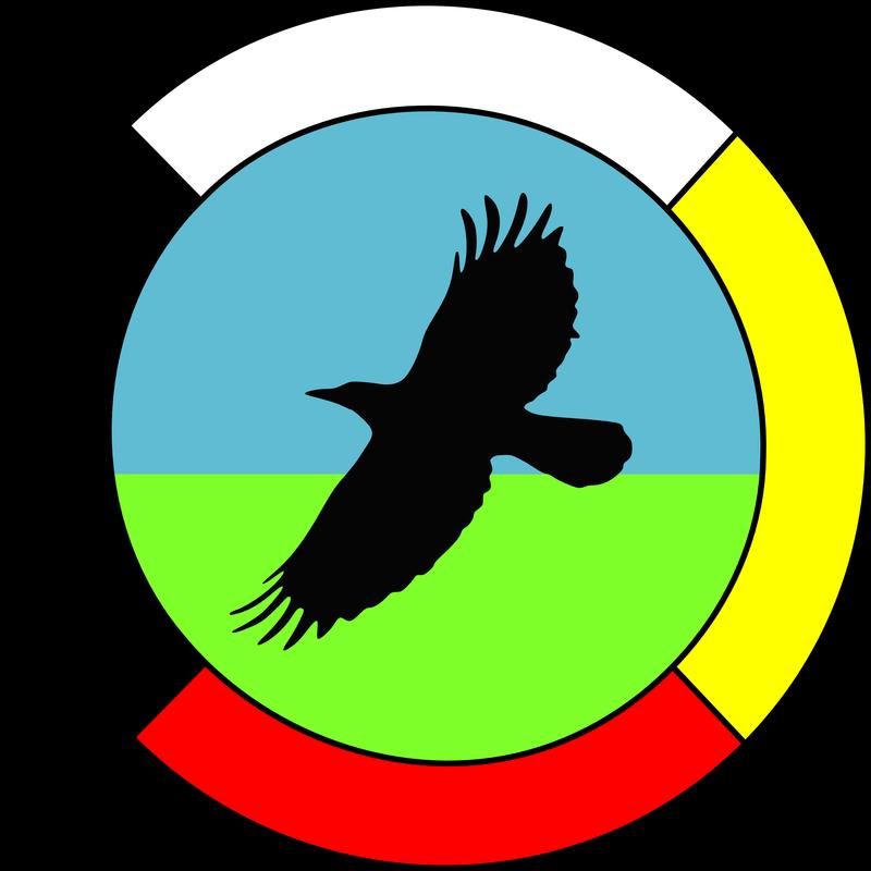 Medicine Wheel In 2020 Native Drawings