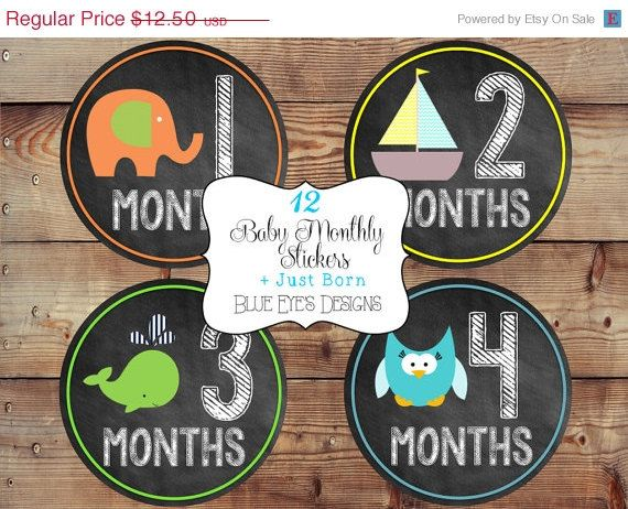 ON SALE Monthly Baby Stickers,Baby Monthly Stickers,Month by Month Stickers,Baby Milestone Stickers,Chalkboard Month Stickers,Baby Boy Month on Etsy, $10.00