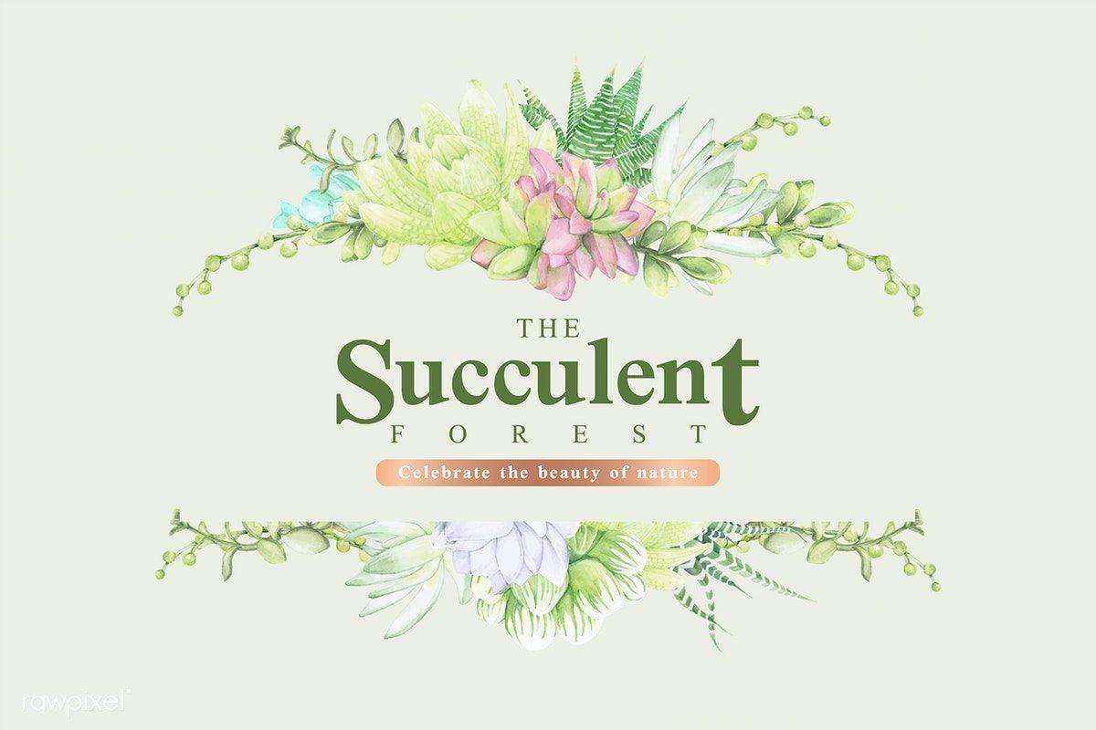 Download premium vector of Hand drawn succulent banner ...