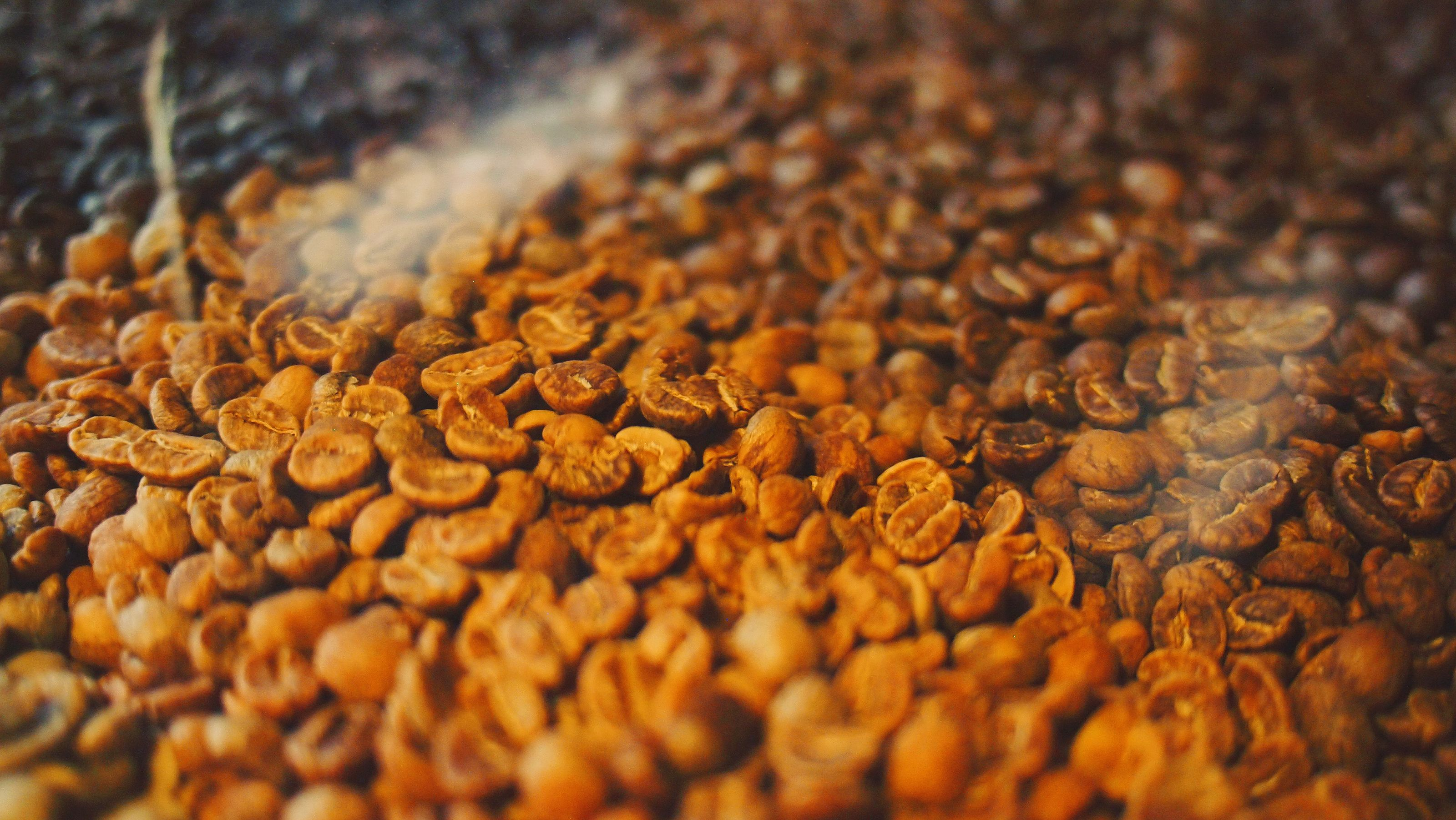 Coffee food drinks coffee beans dog food recipes