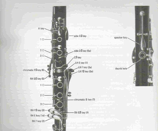 Clarinet Fingering Chart  Charts    Clarinets Musical