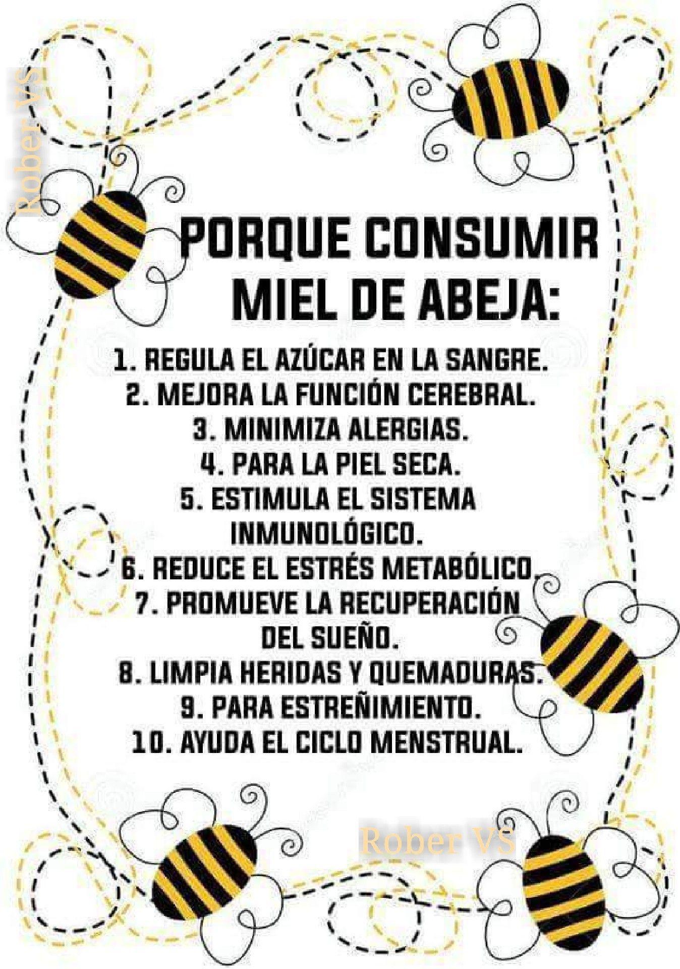 Porqué consumir miel de abeja? | Abejas-Bees/Apicultura-Beekeeping ...
