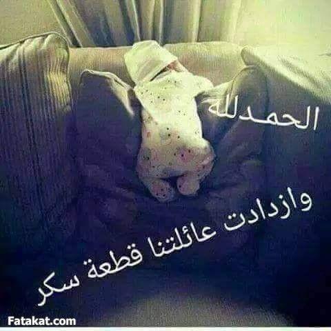 ادعيــــــلي دعوة من القلب منتدى فتكات Documents