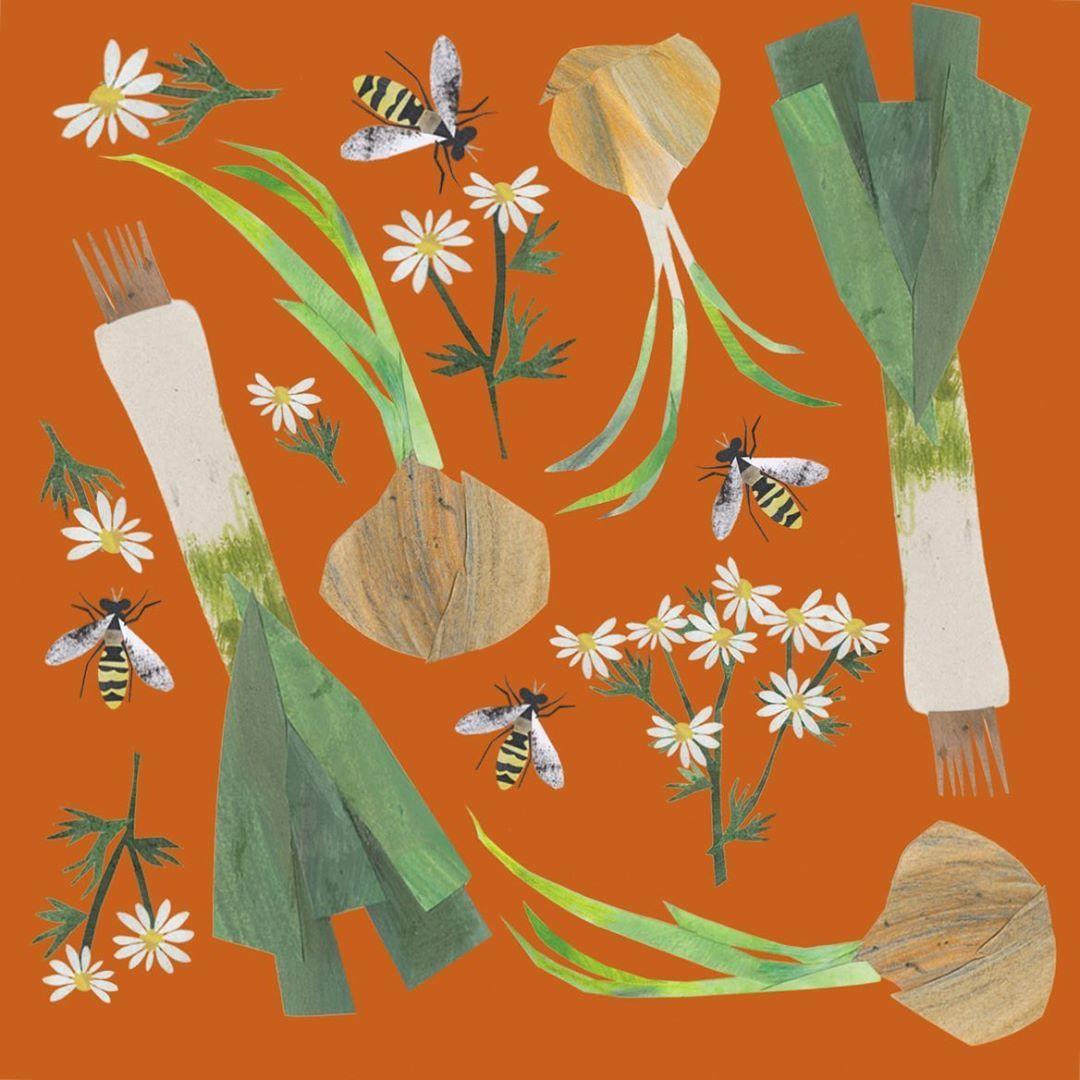 "Clover Robin on Instagram: ""Companion planting patterns # ... Leek Companion Plants"
