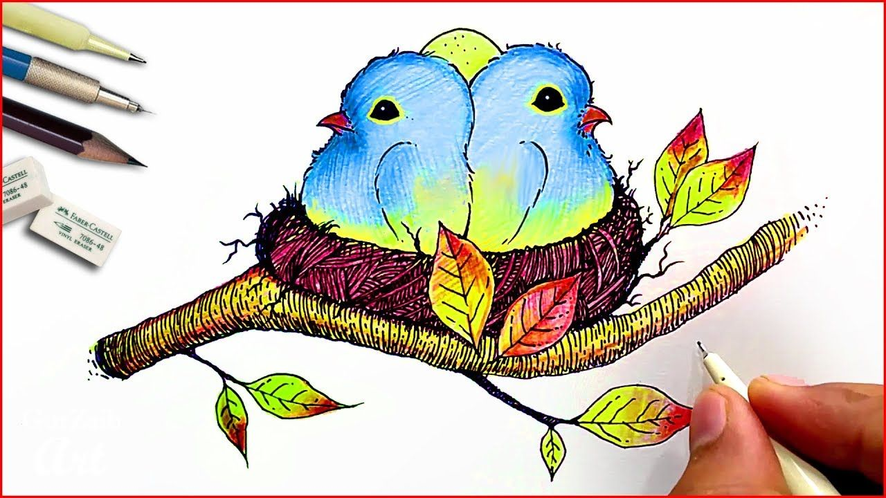 How To Draw Cute Baby Birds Nest Drawing With Colored Pencil And