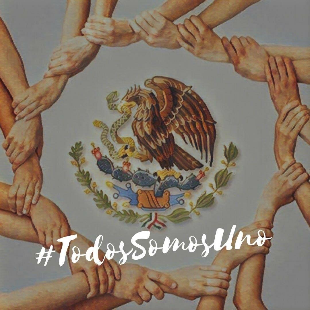 Pin de Esperanza Ibarra en Mi Mexico‼️♥️ 19 de