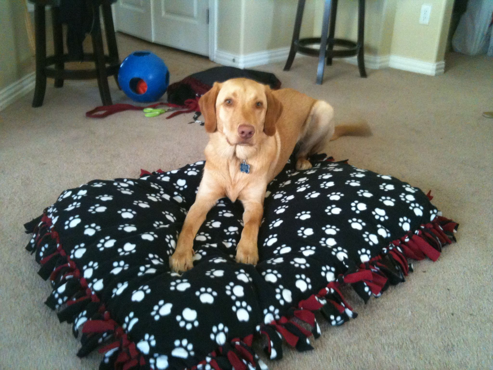 Ideas For Old Pillows: Homemade dog bed  Instead of paying $40 at the store  You can use    ,