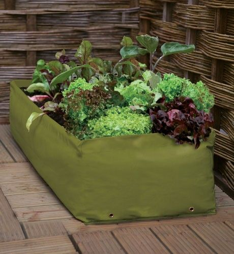 Haxnicks Gemüse Hochbeet Pflanztasche Auf Der Terrasse Small Image ... Gemuse Auf Dem Balkon Hochbeet Garten