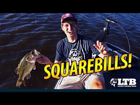Catch More Bass With A Squarebill