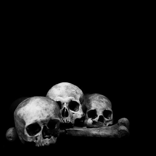 Simple Skull Shot Hades Bilder Okkult