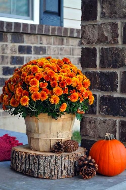 Fall Decor Ideas #falldecorideasfortheporch