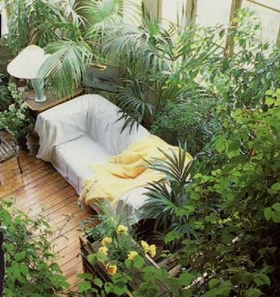 35 Indoor Garden Ideas To Green Your Home: Transform Your Home Into A Rainforest Jungle (& List Of Tropical Plants To Grow Indoors)