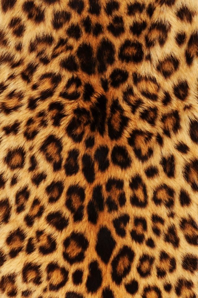 Cheetah Leopard Print Wallpaper Cheetah Print Wallpaper Animal Print Wallpaper