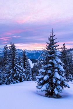 Alpenstrasse #fondecrannoel