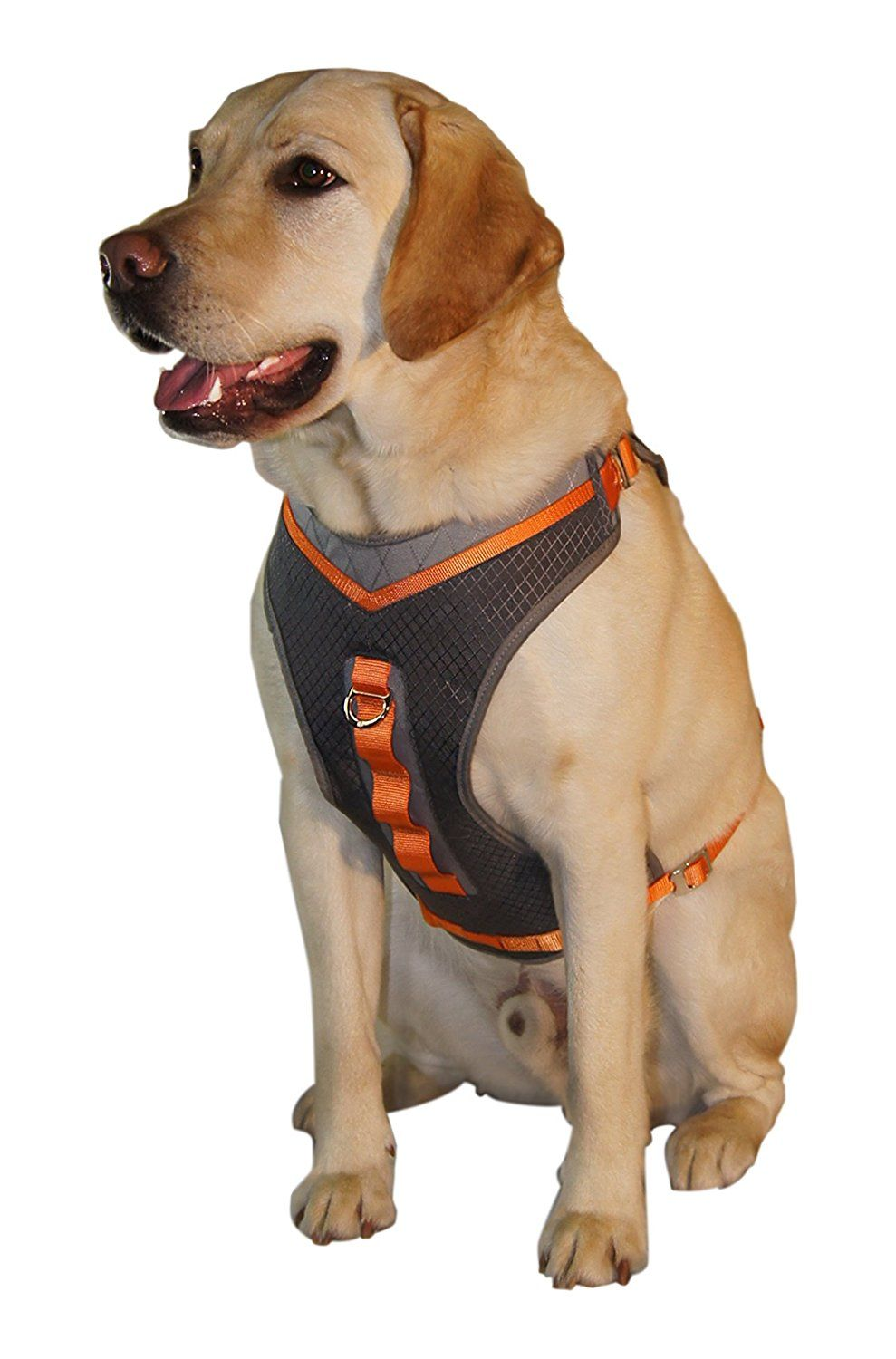 Kurgo Pinnacle Dog Harness Insiders Special Review You Cant Miss Read More Harnesses For Dogs