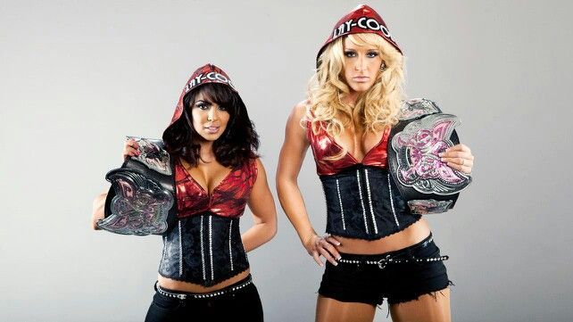 Image result for layla and michelle mccool