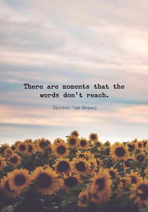 There are moments that the words don't reach. —via Hay momentos en que las palabras no alcanzan … —via