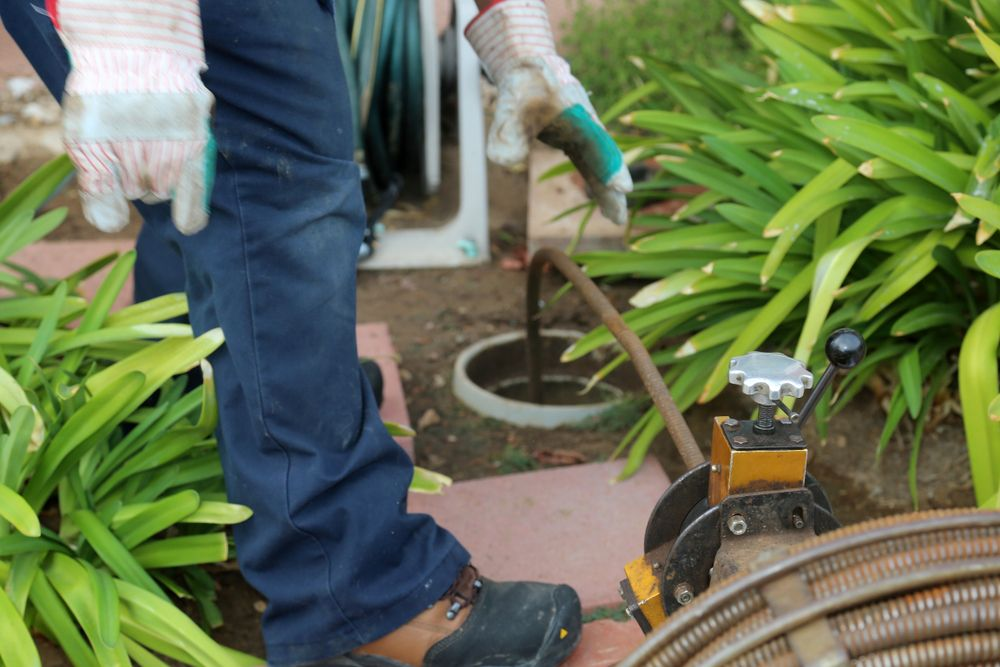 Main Sewer Clogs Common Causes, Warning Signs and
