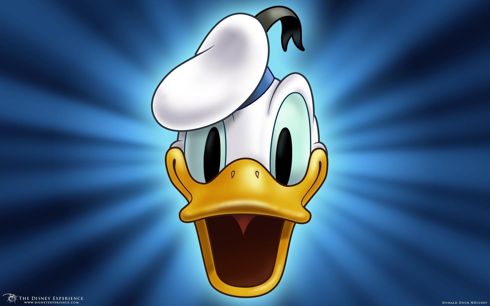 دونالد داك ديزني هد خلفيات عريضة ل عريضة 62 خلفيات هد خلفيات Duck Cartoon Duck Wallpaper Donald Duck