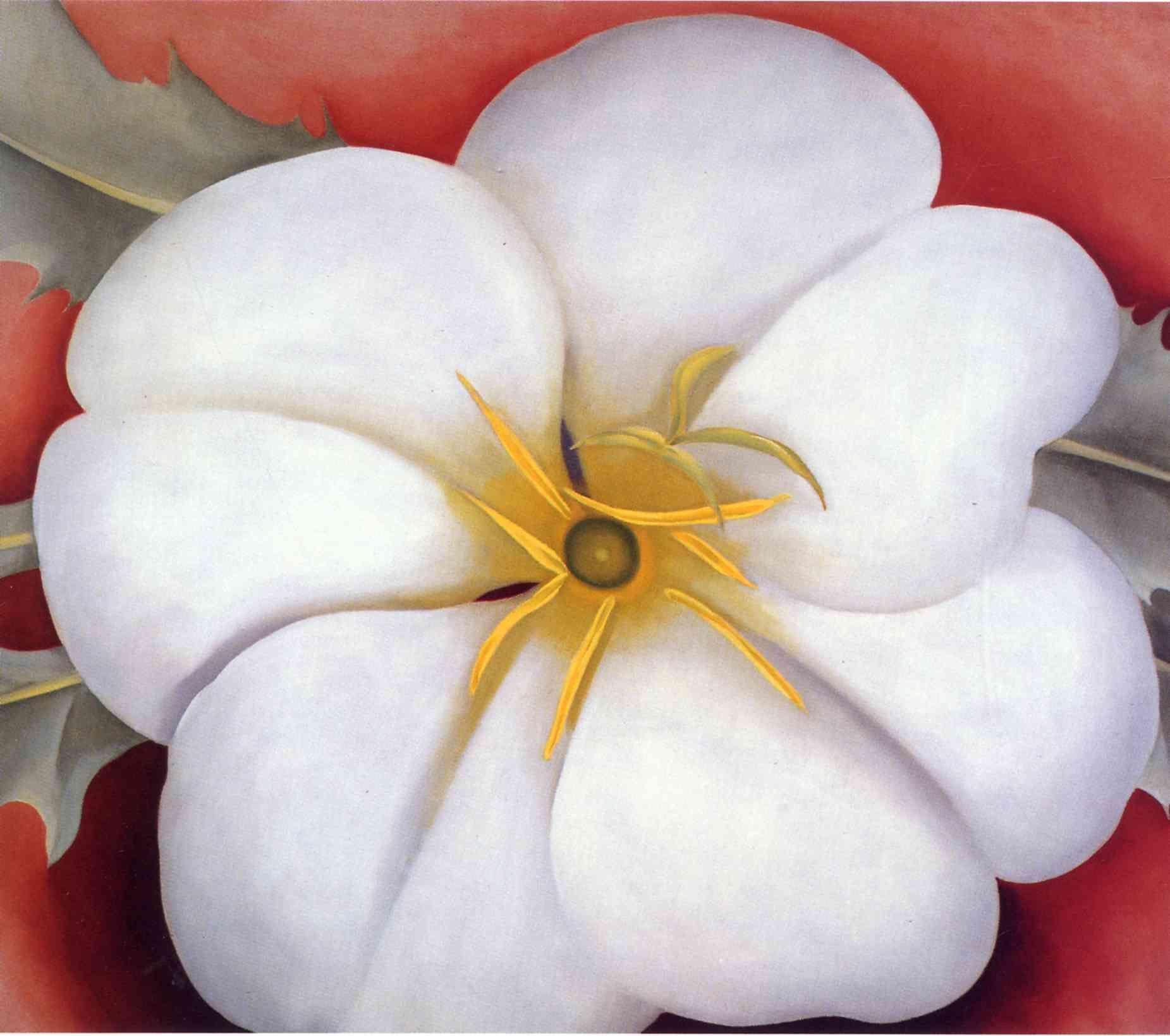 Georgia okeeffe white flower on red earth no 1 georgia o white flower on red earth no 1 mightylinksfo