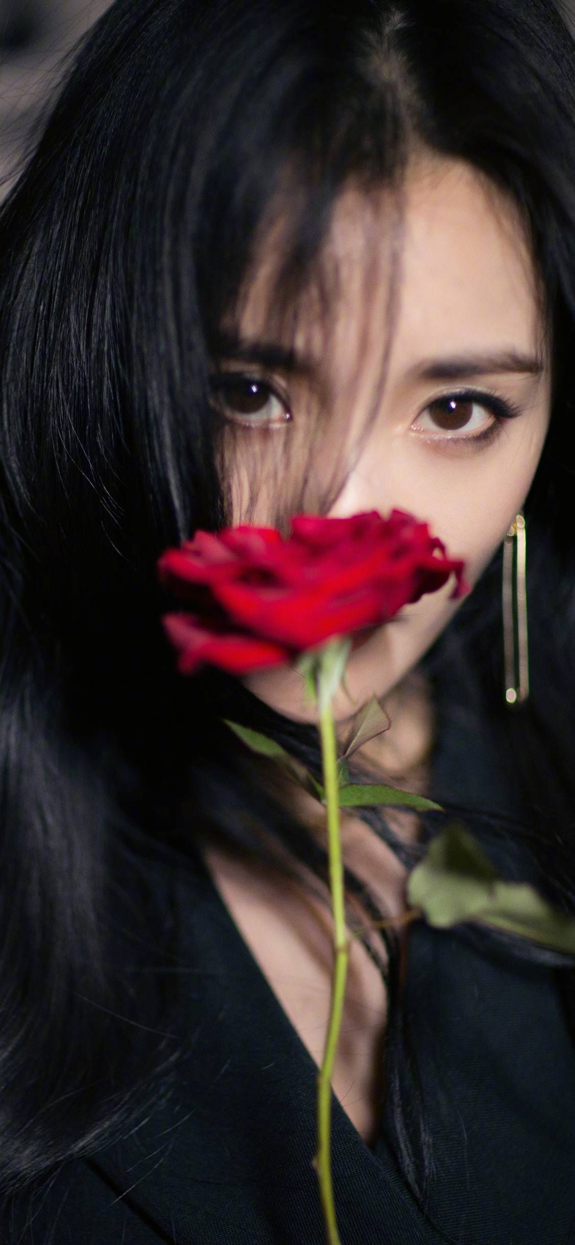 Actor of rose of Yang Mi's actor Wallpapers for iPhone X