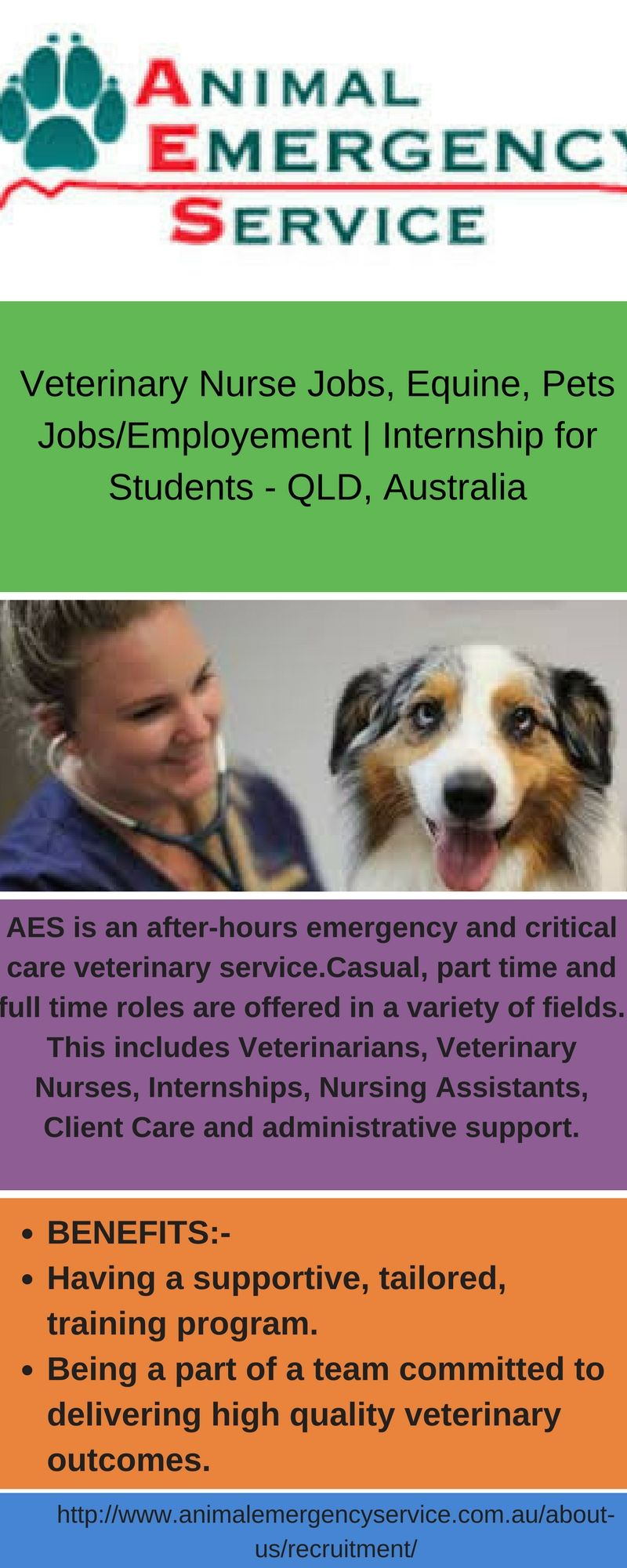 Aes Is An After Hours Emergency And Critical Care Veterinary Service Due To The Nature Of The Business Most Posi Veterinary Services Nursing Jobs Critical Care
