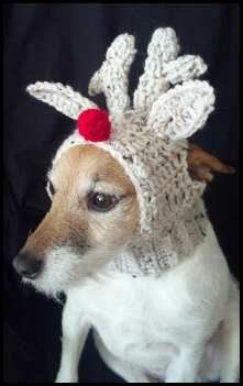 Crocheted Doggie Reindeer Hat FREE Shipping in USA by Shelleden ... 23f65aa2cdd