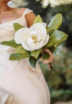 Bride S Bouquet Of White Magnolia Foliage Magnolias Wedding Bouquet Magnolia Bouquet Magnolia Wedding