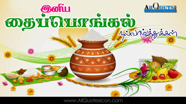 Image result for happy pongal in tamil