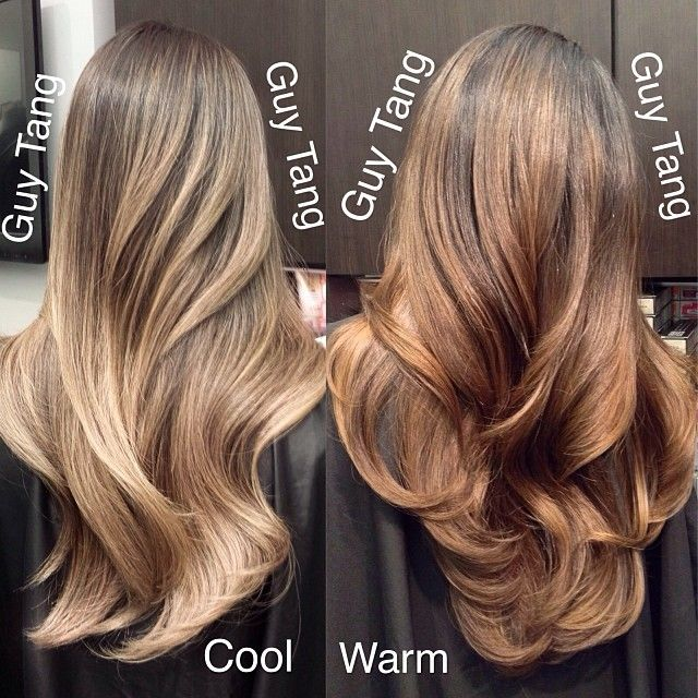 Do You Want Cool Or Warm Tone Hair Color Ideas For Brunettes Balayage Brunette Hair Color Tone Hair