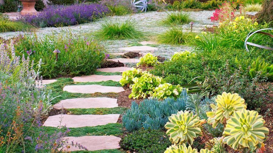 Case Study Wild Romantic Water Wise Landscaping Low Water Landscaping Waterwise Garden