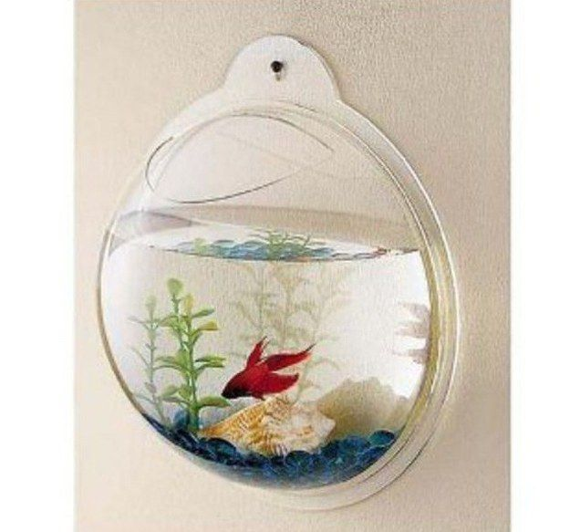Photo of Lastly, give your kids the ultimate bragging rights by hanging this fish bowl on their bathroom wall.